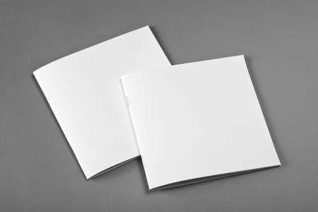 replace: Blank Brochure magazine isolated on grey to replace your design Stock Photo