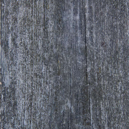 mangy: Pattern of old weathered timbered wall,  background, texture, wallpaper