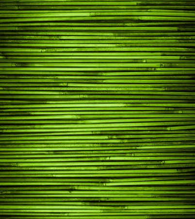 자연 패턴을 가진 녹색 대나무 질감을 닫습니다