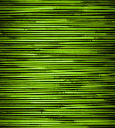 Green bamboo texture with natural patterns, close up
