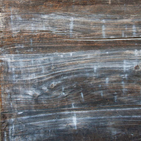 mangy: Highly detailed texture of a old wooden surface