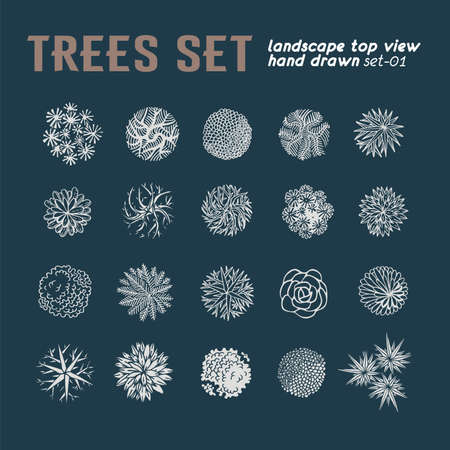 Trees top view. Different plants and trees vector set for architectural or landscape design. View from above Illustration