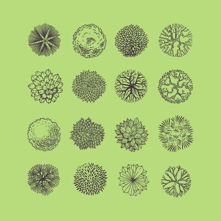 Bomen bovenaanzicht. Verschillende planten en bomen vector set voor architecturaal of landschapsontwerp. Uitzicht van boven Vector Illustratie