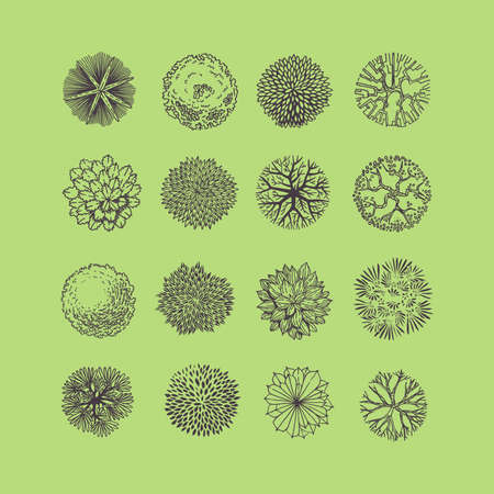 Trees top view. Different plants and trees vector set for architectural or landscape design. View from above Vettoriali