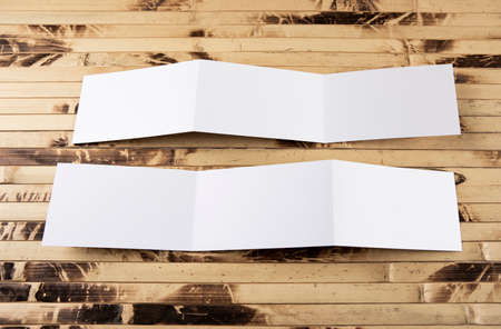 identity design, corporate templates, company style, blank white folding paper flyer 免版税图像