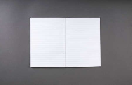 Open notebook with blank pages. Identity template 写真素材