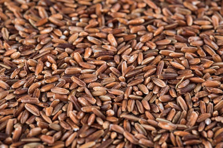Dry raw unpolished brown rice Stock Photo