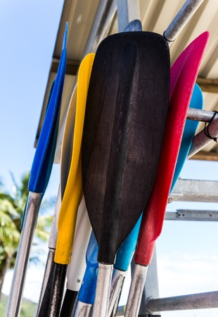 The colorful blades and aluminium handles of paddles lean together on the beach photo