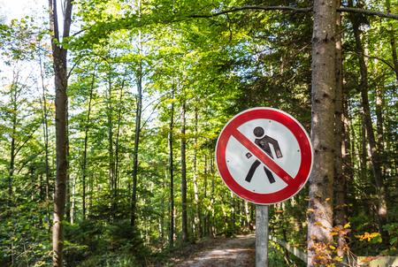 No hay señales de entrada con el fondo del bosque