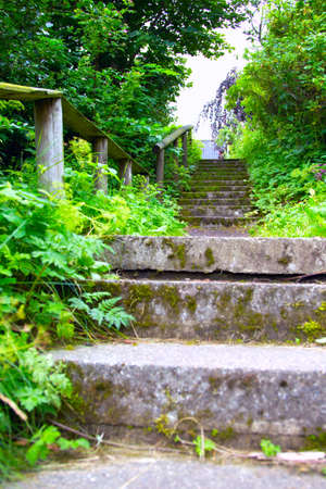 Concrete stairs in the open nature.