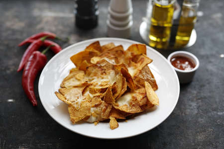 Nachos baked with cheese and tomato salsa. Crunchy nacho with cheese and tomato dip. Baked corn nachos with cheese and tomato salsa. Mexican cuisine. An appetizing snack. Suggestion to serve the dish Reklamní fotografie