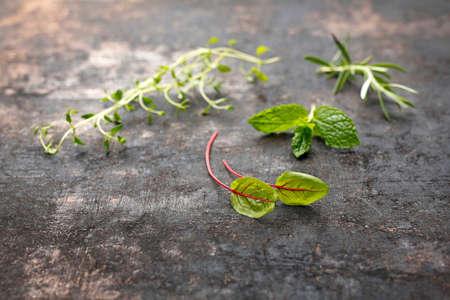 Herbal background. Green fresh herbs on a dark background. Standard-Bild