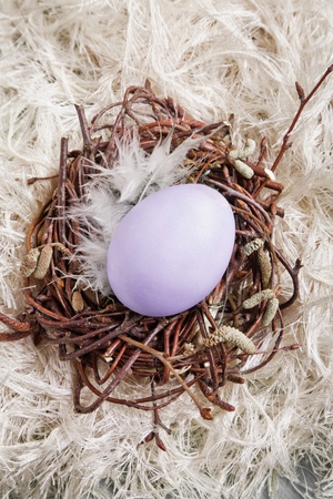 eastertide: Colored egg in a small nest with wool background