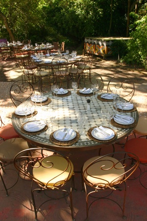 afrika: Banquet table in South afrika with african chairs under a big tree