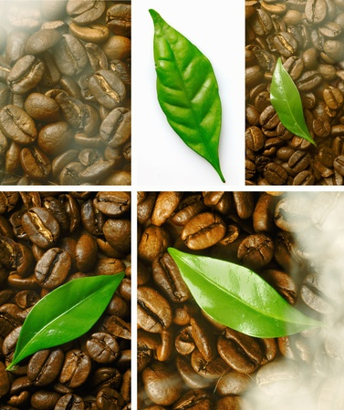 Montage of closeup images of freshly roasted coffee beans with a green leaf detail photo