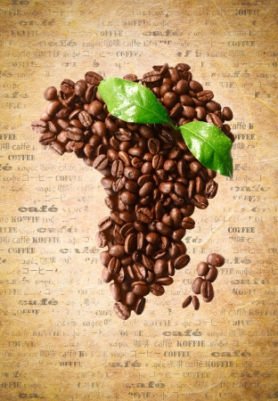 Freshly roasted coffee beans arranged in the shape of Africa on a sheet of aged vintage paper with the word coffee in multiple languages.