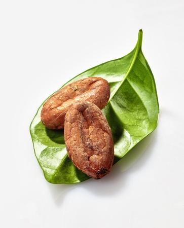 cacao: Dos granos de cacao en una hoja de cacao verde aislado en el fondo blanco