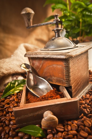 instant coffee: Coffee Grinder with coffee beans in the background Stock Photo