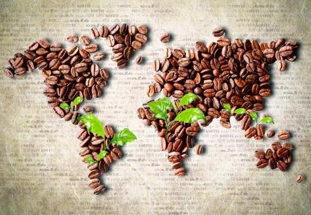 coffeetree: World of coffee Stock Photo