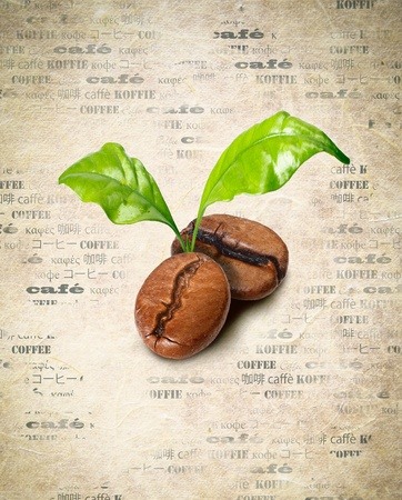 Tow coffee beans with green leaves on a backround of aged paper with the word coffee repeated multiple times in different languages photo