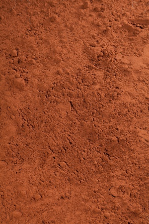 cocoa powder: cacao powder, or chocolate powder for choc concepts