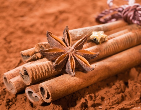 Cinnamon bundled, with anise star on a brown cocoa background photo