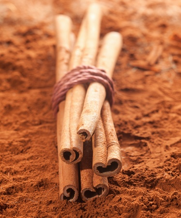 Long cinnamon on a brown cacao background photo