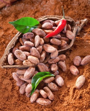Cacao beans in a shell with cocoa leaves and beans and chili photo