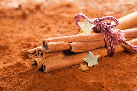 Bundle of Cinnamon with golden Stars on powdered cocoa photo