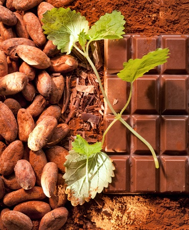 chocolate mint: Mint Chocolate with cocoa beans and powdered cacao in the background Stock Photo