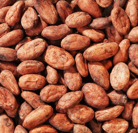 a Handful Cacao Beans full framed close up photo