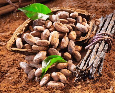cacao: y Caco frijoles en una c�scara de cacao en polvo de cacao de fondo
