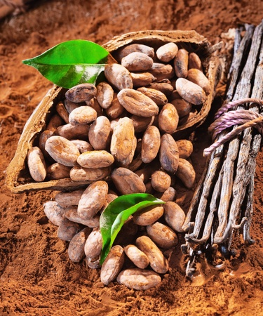 Cacao beans in a shell with a bunch of vanilla and fresh green leaves photo