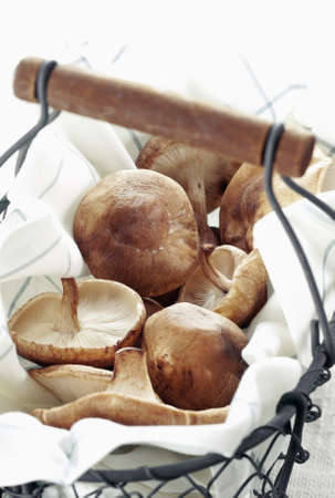 Shitake Mushrooms in a basket for Organic food concepts Stock Photo - 12926825