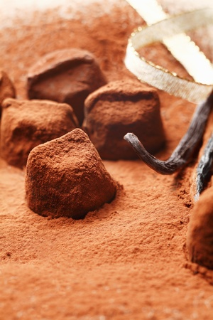 Chocolate pieces of irregular sizes covered in cocoa powder photo