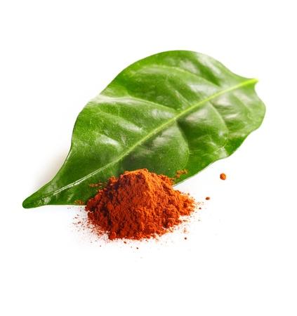 Cacao en polvo y hojas de cacao aislados en blanco Foto de archivo - 12926878