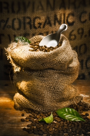 Small hessian sack filled with fresh roasted coffee beans topped by a small shovel with the word Organic highlighted on hessian in the background, conceptual of organically grown coffee photo