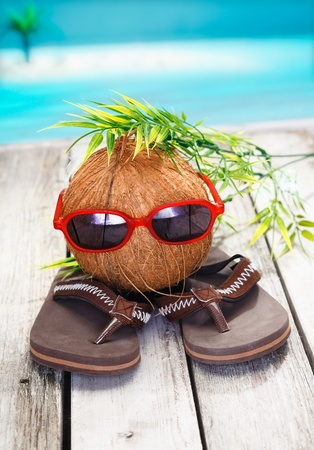 Humorous spoof of a cool coconut adventurer with a leafy hairstyle and trendy red sunglasses
