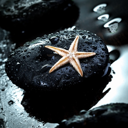 Black therapeutic spa massage stone glistening with water droplets with a small starfish photo