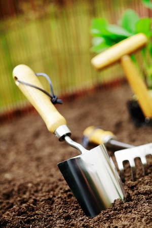 Metallic silver garden trowel standing in freshly turned soil ready for working in the garden photo