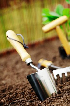 urban gardening: Metallic silver garden trowel standing in freshly turned soil ready for working in the garden