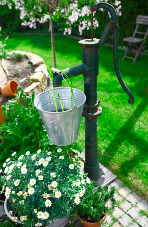 herbary: Ornamental old cast iron water pump and galvanised steel bucket being used as a landscaping feature in a lush garden