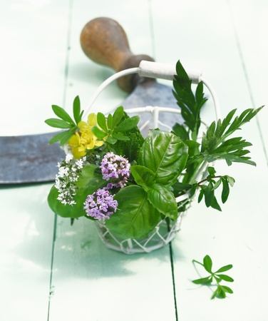 Bunch of Herbs in a wire Basket. In front of an old mincing knife on wooden background. Thyme, Woodruff , Basil and Mint outdoors for food ingredients concepts.