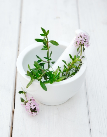 Thyme in a Mortar with pestle on a beautiful white wooden background photo