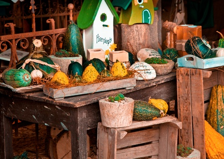 Beautiful autumn arrangement with gardening accessories in fall photo