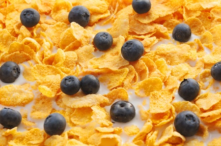 Black currents and breakfast cereal floating in milk. Stock Photo - 14071970