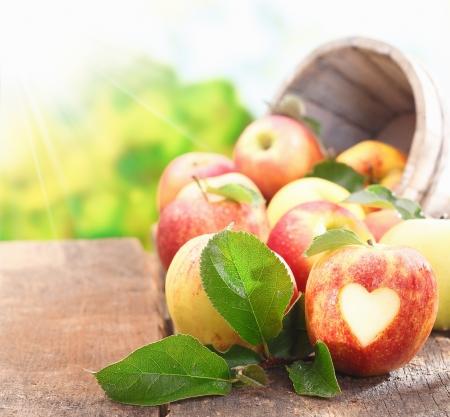 コレクションの採れたての熟した赤いりんごちゃんと開析ハート形でフォア グラウンドで 1 つと、皮膚の 写真素材
