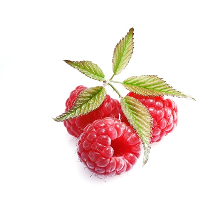 Luscious healthy fresh ripe red raspberries isolated on a white backgound with leaves Stock Photo - 14759775