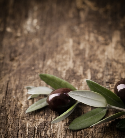 antipasti: Black olive branch with leaves and olives lying on a textured weathered wooden table surface with copyspace