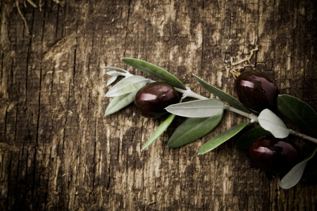 Branch with fresh black olives lying on a textured grungy wooden surface with vignetting photo